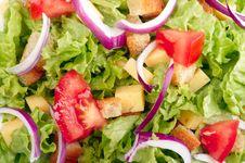 Free Salad Background Royalty Free Stock Image - 15964136