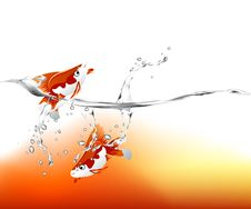 Free Goldfish Jumping Stock Photos - 15965243