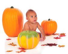 Free Pumpkin Baby Stock Image - 15967521