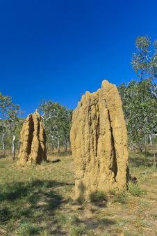 Free Large Cathedral Termite Mounds Royalty Free Stock Photos - 15967608