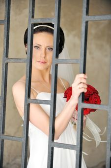 Free Bride With Roses Royalty Free Stock Photo - 15967735