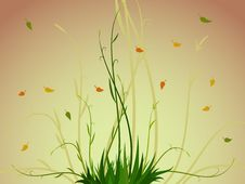 Free Plant And Leaf Background Royalty Free Stock Photos - 15967768