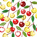 Free Sweet Cherry Seamless Ornament Stock Photography - 15973262