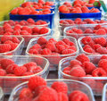 Free Sweet Fresh Raspberries Closeup Stock Images - 15977374