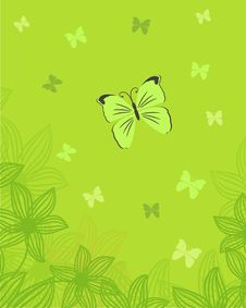 Free Floral Card With Butterfly Stock Photo - 15970060