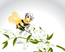 Free Happy Bee Character Stock Photos - 15971263