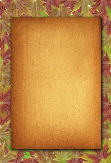 Free Autumn Background With Blank Old Paper And Leaves Stock Photo - 15971660