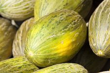 Free Fresh Pumpkins Stock Photography - 15971732