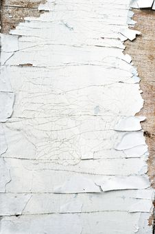 Free Cracked Paint On Old Door Texture Stock Images - 15972784