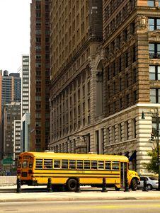 Free School Bus Royalty Free Stock Photo - 15973335
