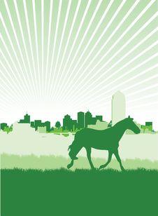 Free Horse Royalty Free Stock Photos - 15973728