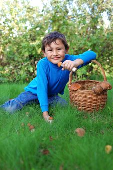 Free Little Boy With Mushrooms Stock Photography - 15973762