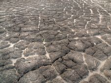 Free Drought Royalty Free Stock Photography - 15974367