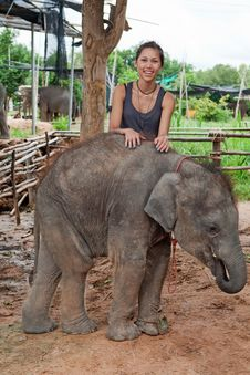 Teenager With Baby Elephant Stock Images
