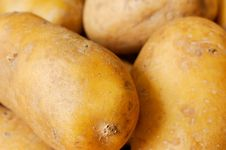 Free Potatoes Stock Photo - 15974940