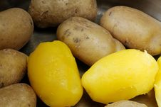 Free Potatoes Royalty Free Stock Image - 15974966