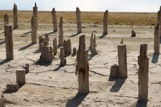 Free The Old Wooden Destroyed Columns Royalty Free Stock Image - 15975616