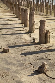 Free The Old Wooden Destroyed Columns Royalty Free Stock Photos - 15975768