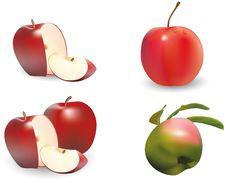 Free Apple Stock Photography - 15975982
