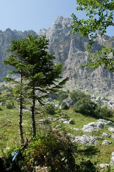 Free Landscape In Mountains Stock Photo - 15976080