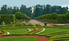 Free Avenue And Bed In Formal Garden Stock Images - 15978154