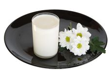 Free Glass Of Milk Stock Photography - 15978392