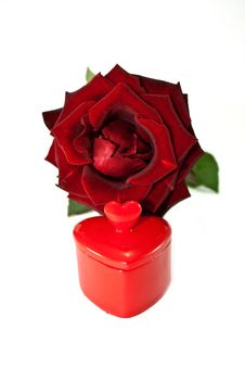 Free Rose And Heart Stock Photos - 15979813