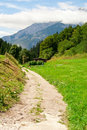 Free Country Road Near A Meadow Royalty Free Stock Photos - 15981488