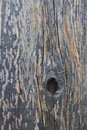 Free Old Wood Texture Stock Photos - 15988733