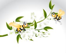 Free Happy Bee Character Royalty Free Stock Photography - 15981077