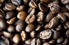 Free Coffee Beans Stock Image - 15981511