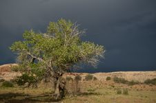 Free Before A Storm Stock Image - 15982081