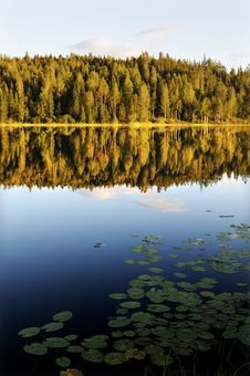 Free Water Lake Mirror Stock Images - 15982394