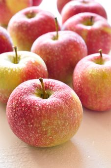 Free Apples Stock Image - 15984941