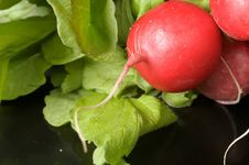 Free Red Radish Stock Image - 15985011