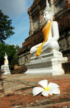 Free Buddha Statues Royalty Free Stock Photos - 15985408