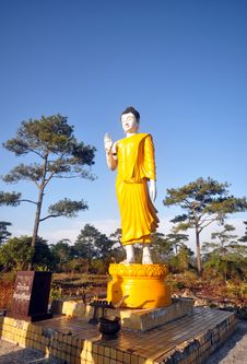 Free Buddha In Forest Royalty Free Stock Photo - 15986085
