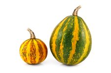 Free Pumpkin Royalty Free Stock Photo - 15986195