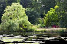 Free Lake At Forde Abbey Stock Photo - 15986210