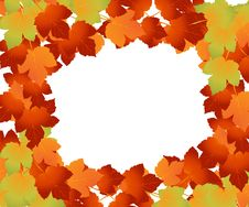 Free Autumn Leaves Royalty Free Stock Photography - 15987117