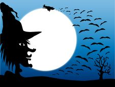 Witches And Bats At Halloween Stock Photography