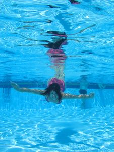 Free Swimming Underwater Photo Stock Photography - 15988672