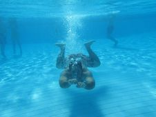 Free Swimming Underwater Photo Stock Photo - 15988860