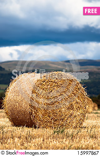 Free Bales Of Hay On Meadow Against The Sky V2 Royalty Free Stock Photography - 15997867