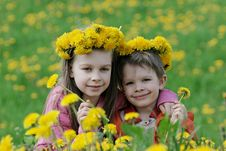 Free Brother And Sister With Dandelion Garlands Stock Image - 15990121