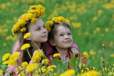 Free Brother And Sister With Dandelion Garlands Stock Photography - 15990152