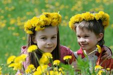 Free Brother And Sister With Dandelion Garlands Stock Photo - 15990190