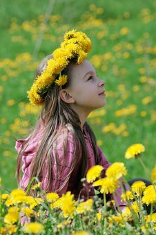 Free Young Girl In Summer Day. Royalty Free Stock Images - 15990219