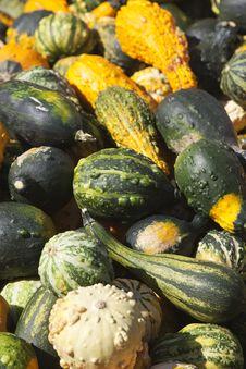 Free Pumpkin Stock Image - 15990281