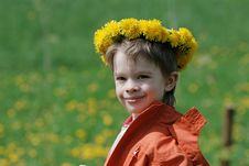Boy In Dandelion Meadow. Stock Photography